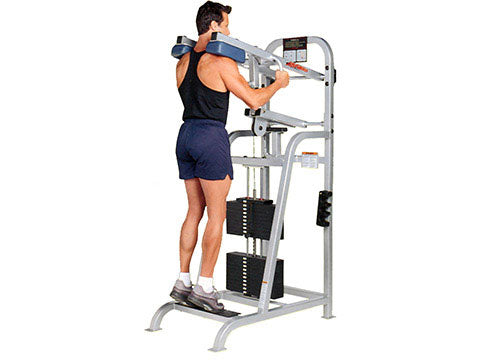 Factory photo of a Refurbished Life Fitness Pro Standing Calf