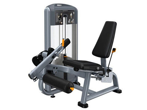Factory photo of a Used Precor Discovery Series Leg Extension
