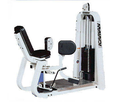 Factory photo of a Refurbished Precor Icarian Hip Adductor