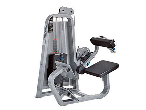 Factory photo of a Used Precor Icarian Low Back Extension