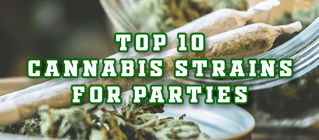 Top 10 Cannabis Strains for Parties