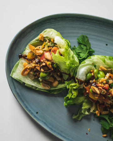 Tempeh & Stir Fried Vegetable Lettuce Wraps