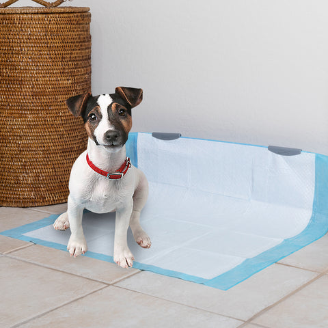 Potty Train Your Puppy with Pico Potty Wall