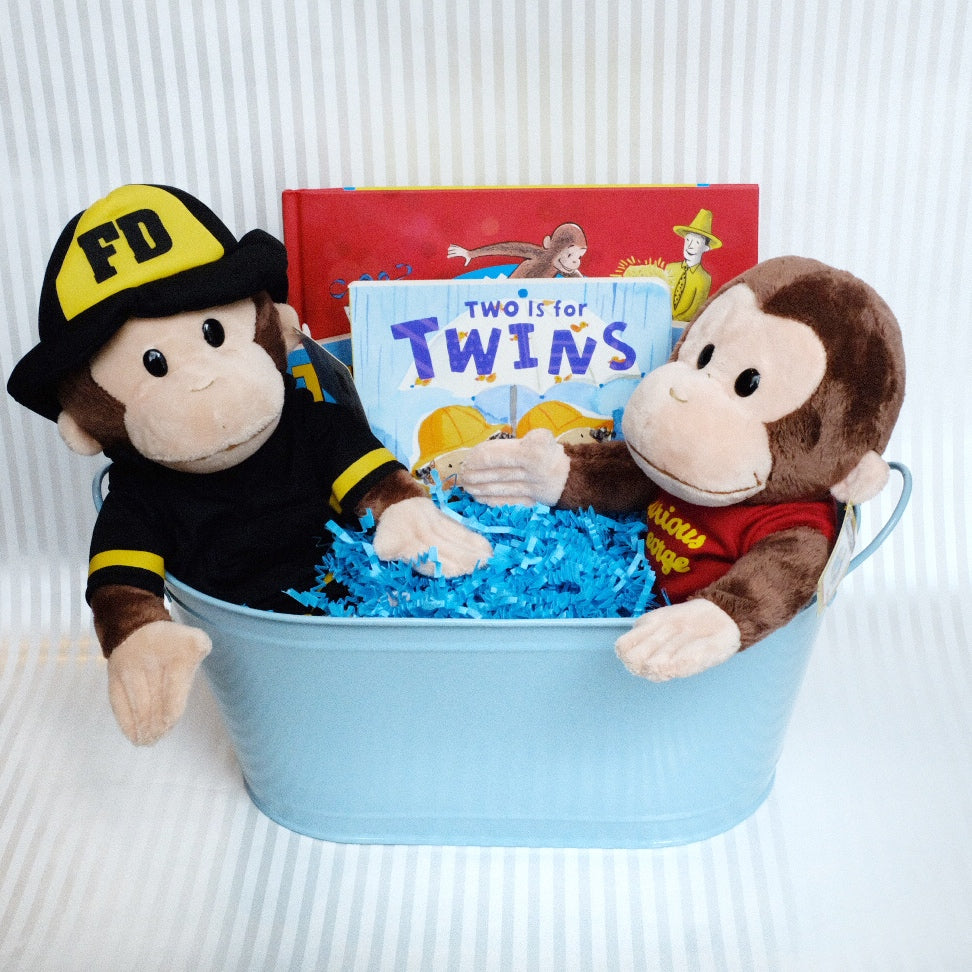 Twins Baby Book Basket