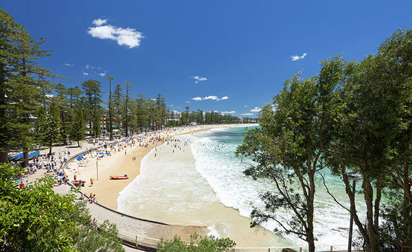 Best Beaches In Sydney To Wear Your Mens Board Shorts