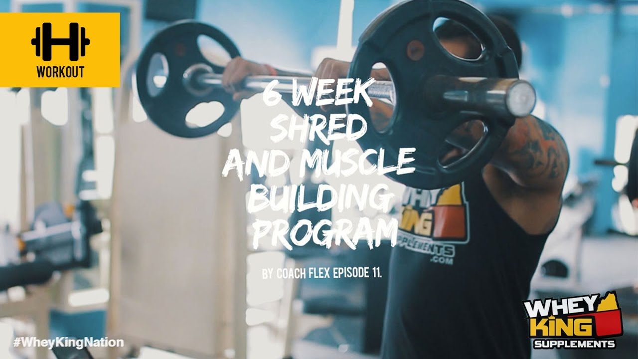 6 week Shred & Muscle Building Program | Coach Flex | Day.11 | Whey King Supplements Philippines