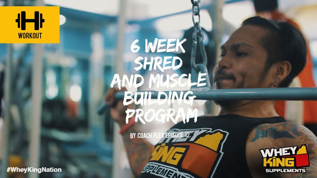 6 week Shred & Muscle Building Program | Coach Flex | Day.12 | Whey King Supplements Philippines