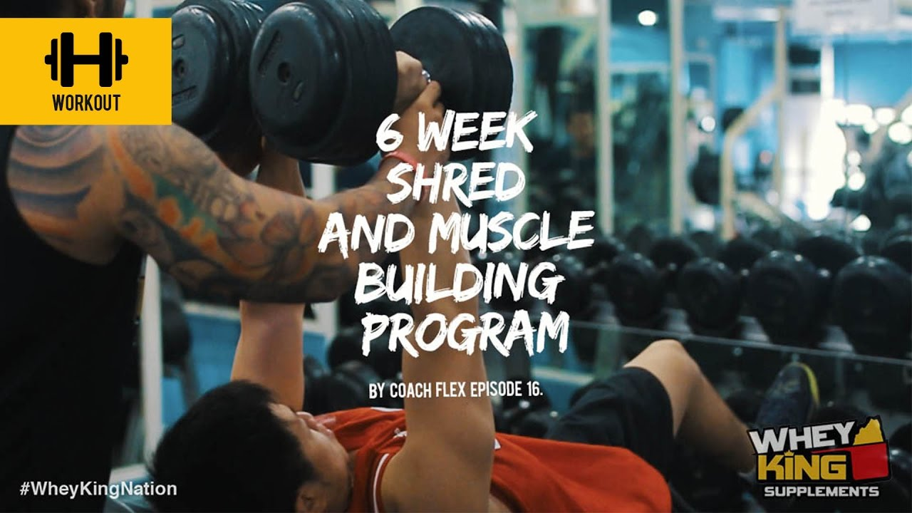 6 week Shred & Muscle Building Program | Coach Flex | Day.16 | Whey King Supplements Philippines