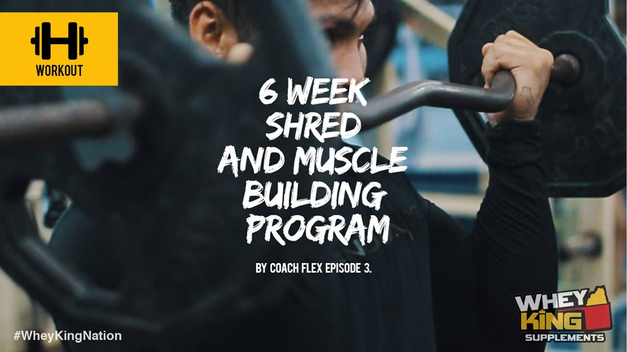 6 week Shred & Muscle Building Program | Coach Flex | Day.3 | Whey King Supplements Philippines