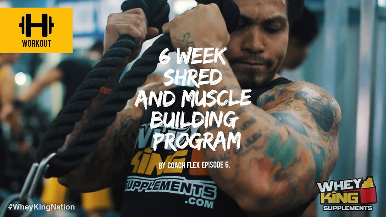 6 week Shred & Muscle Building Program | Coach Flex | Day.6 | Whey King Supplements Philippines