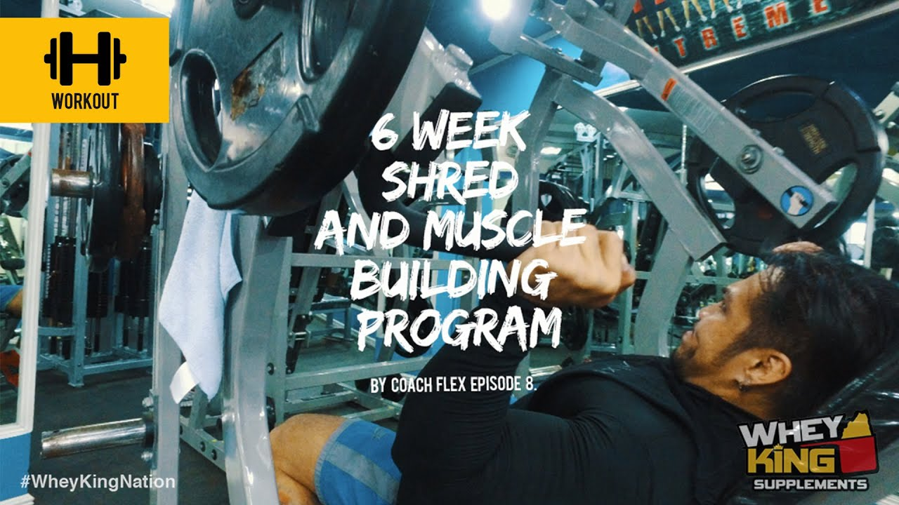 6 week Shred & Muscle Building Program | Coach Flex | Day.8 | Whey King Supplements Philippines