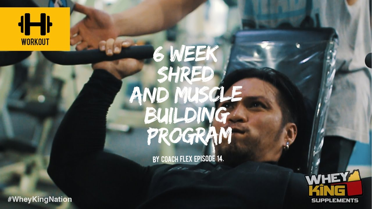 6 week Shred & Muscle Building Program | Coach Flex | Day 14. | Whey King Supplements Philippines