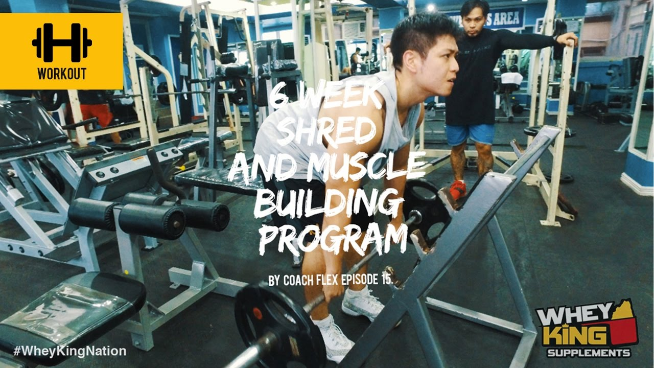 6 week Shred & Muscle Building Program | Coach flex | Day 15. | Whey King Supplements Philippines