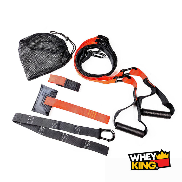 Shop WHEY KING SUSPENSION SET Online | Whey King Supplements Philippines | Where To Buy WHEY KING SUSPENSION SET Online Philippines