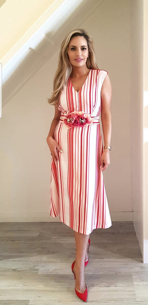Strawberry & Pink Strip Dress