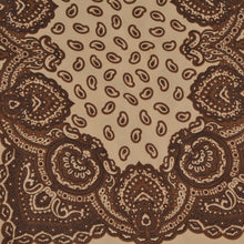 Load image into Gallery viewer, Codello Silk Dress Scarf - Tan & Brown