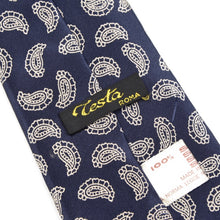 Load image into Gallery viewer, Testa Roma Silk Tie - Paisley Print