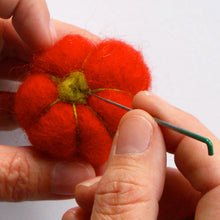 Load image into Gallery viewer, pumpkin needle felting kit complete with pattern