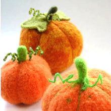 Load image into Gallery viewer, Marie Mayhew's Harvest Pumpkin pattern