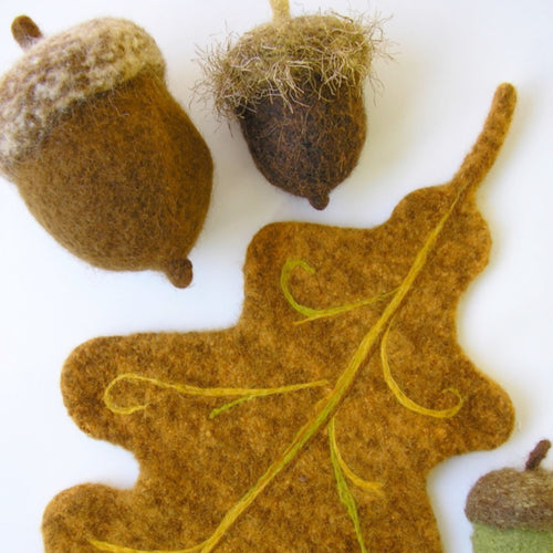 Woolly Acorn & Oak Leaf PDF
