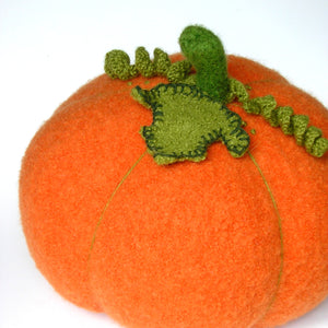 Woolly Pumpkin PDF