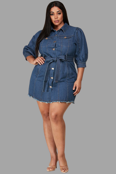 Denim Jean Dress (Curvy)