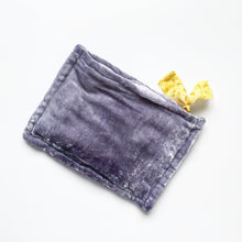 Load image into Gallery viewer, Botanically-dyed Silk Velvet Pouch