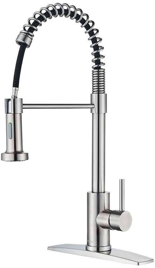 FORIOUS Kitchen Faucet with Pull Down Sprayer