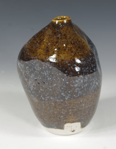 Blue Brown Bottle #1 - Skip Bleecker
