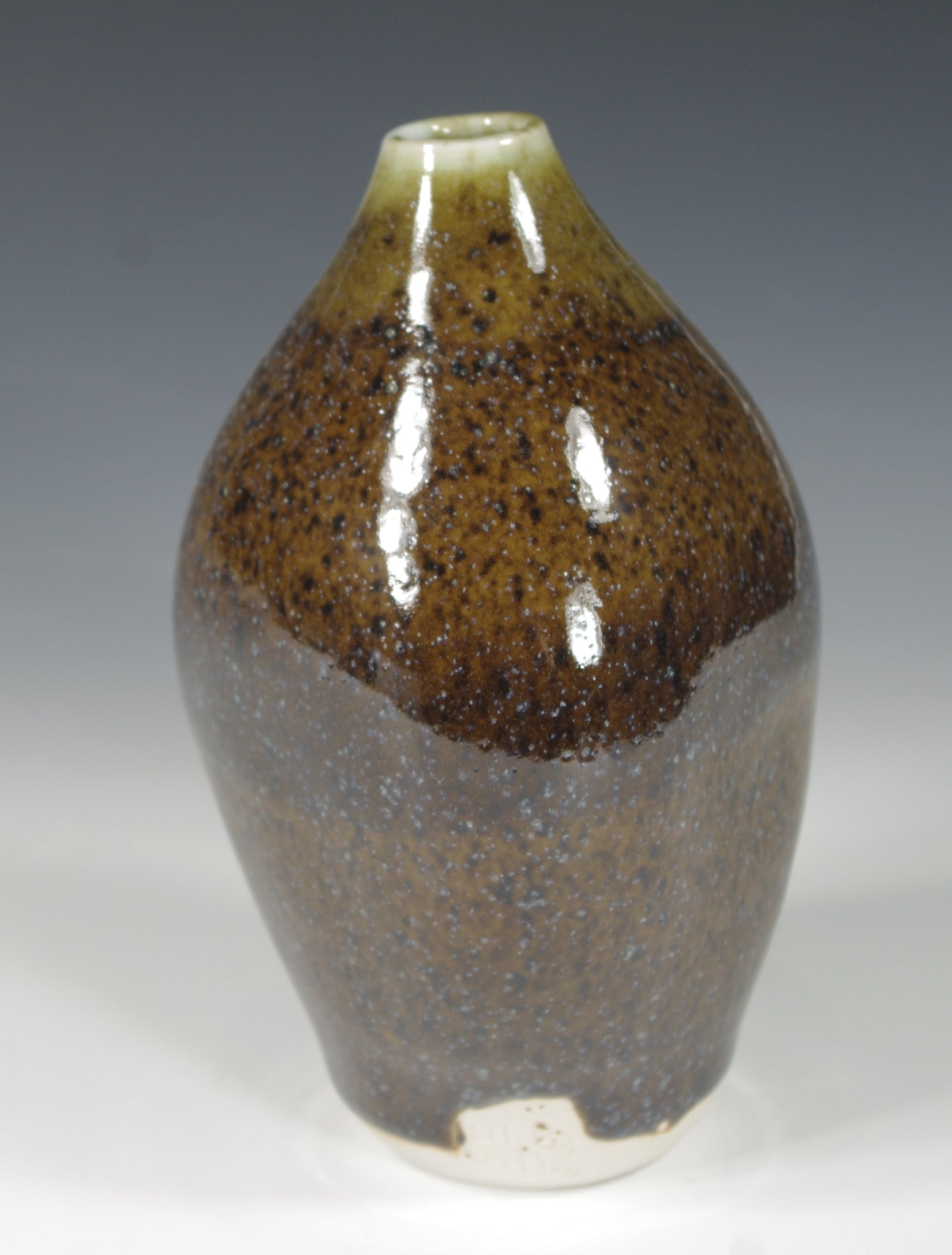 Blue Brown Bottle #3 - Skip Bleecker