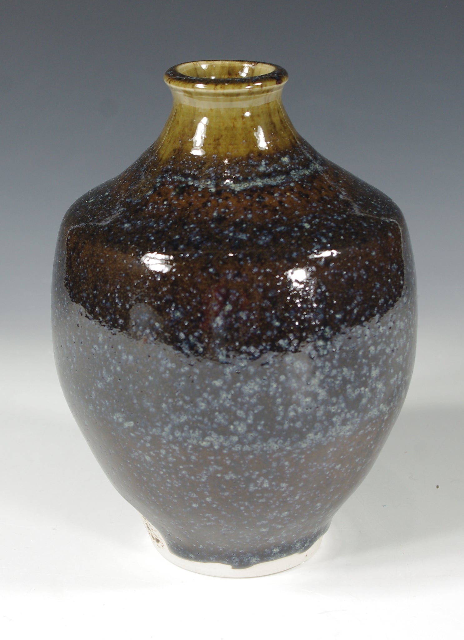 Blue Brown Bottle #4 - Skip Bleecker