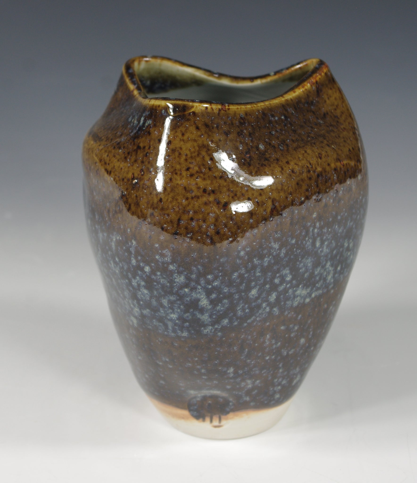 Blue Brown Vase #1 - Skip Bleecker