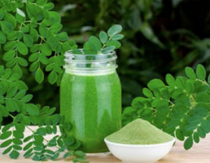 "The Moringa ""Miracle tree"""