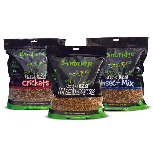 Freeze Dried Australian Insects - Party Mix