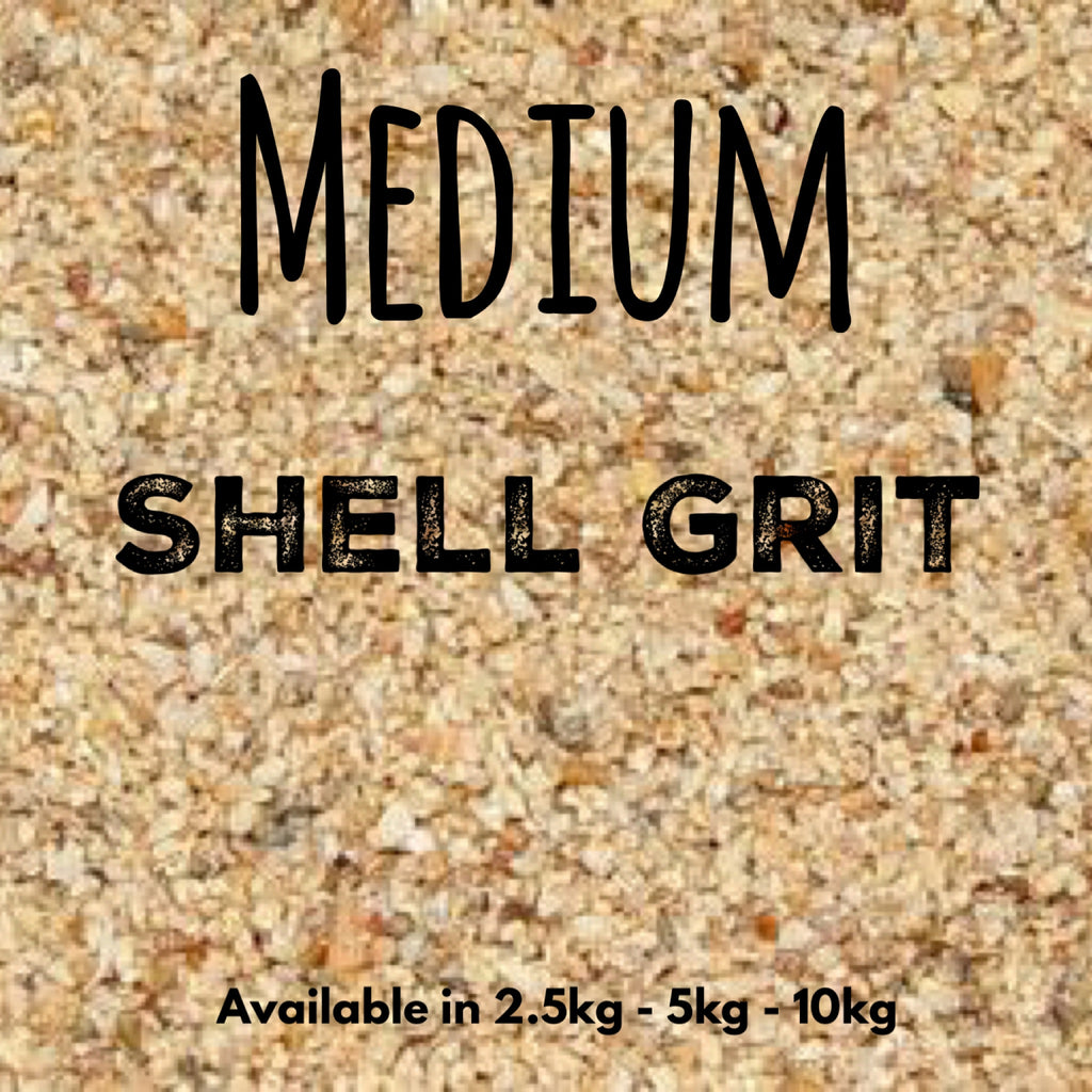 Medium Shell Grit