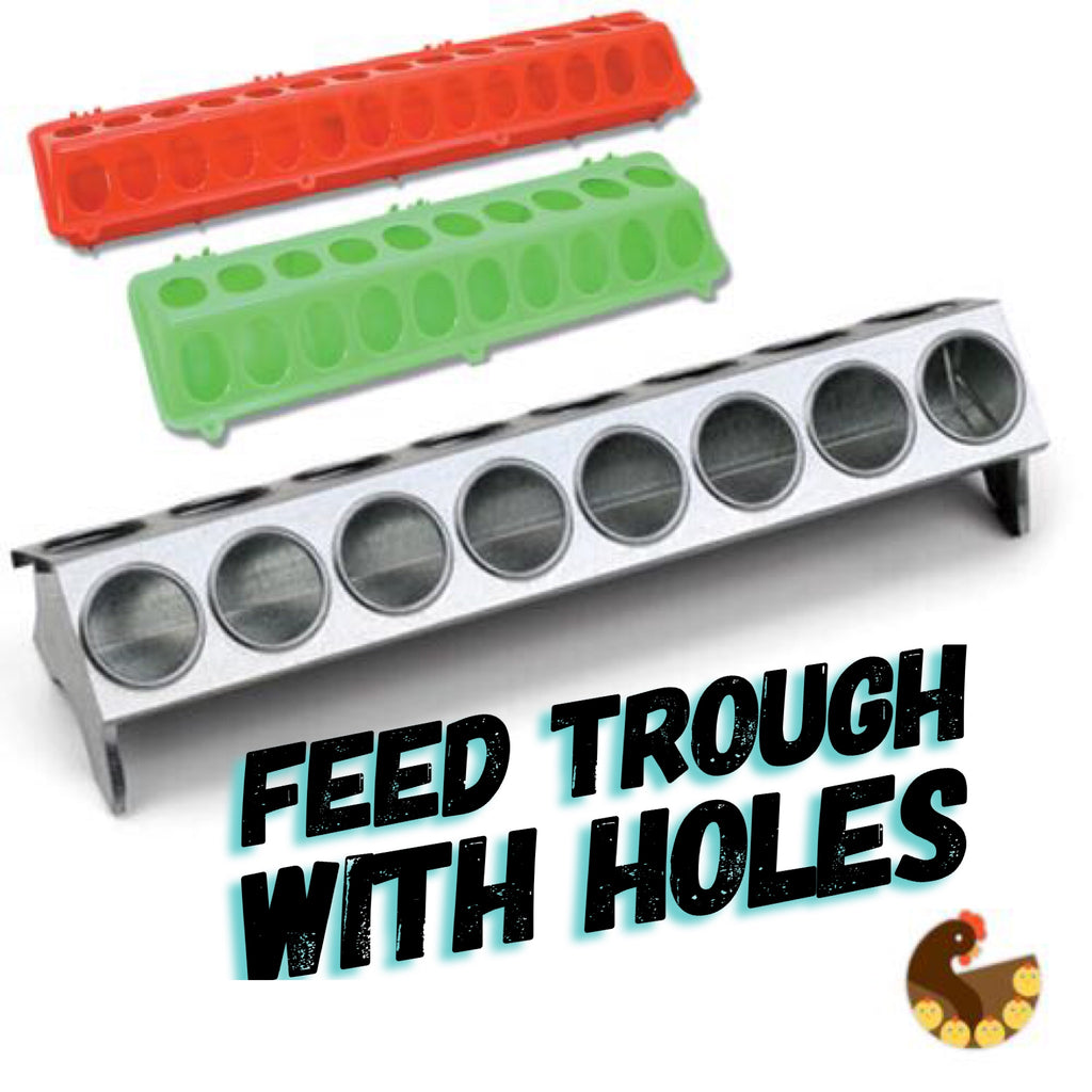 Feed Trough with Holes