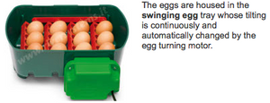 Eggtech 12 Egg Automatic Turn Incubator