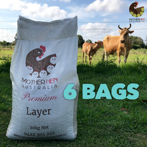PREMIUM LAYER 6 Bags Bulk Price (Free Local Delivery)