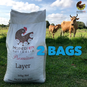Premium Layer 2 Bag Special