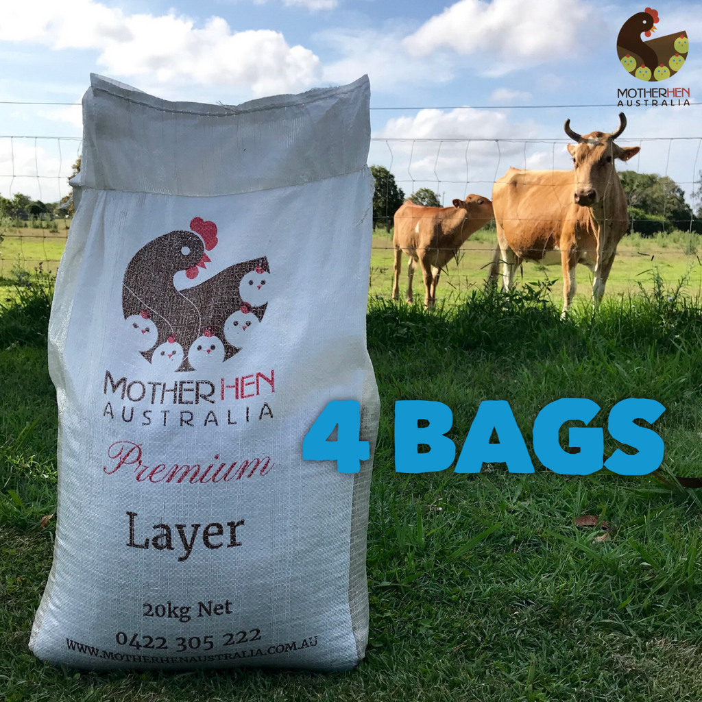 Premium Layer 4 Bags SPECIAL (Incl. Free Local Delivery)