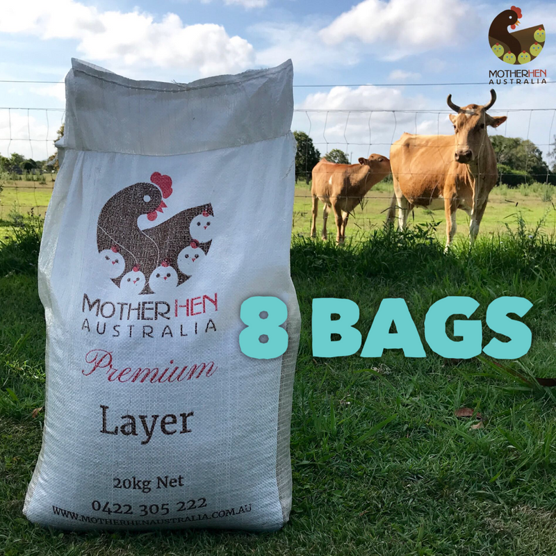 PREMIUM LAYER 8 Bags Bulk Price (Free Local Delivery)