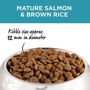 Ivory Coat ~ Salmon & Brown Rice ~ MATURE DOG