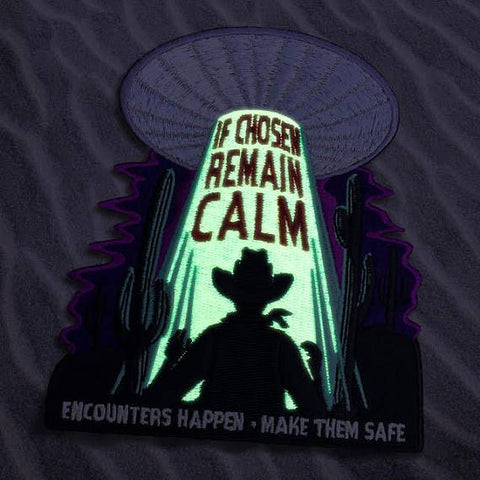 Alien Abduction Pin