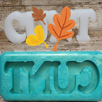 C*nt Swear Freestanding Word Silicone Mould