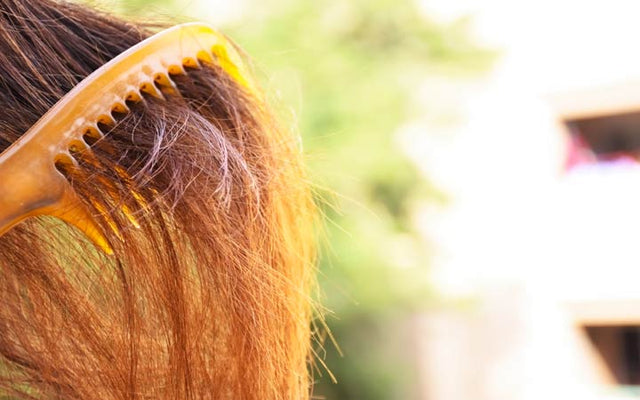 Dry And Frizzy Hair: 14 Natural Ways To Treat The Condition