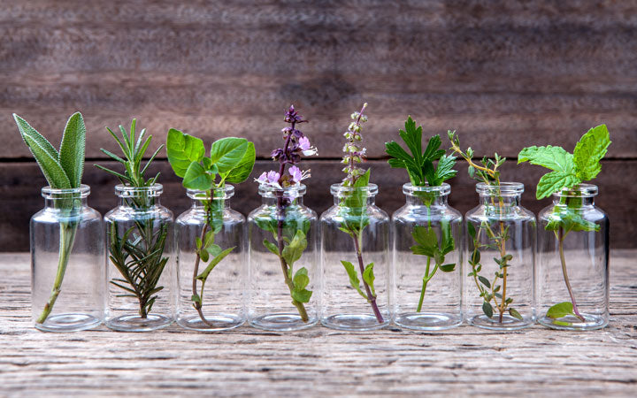 bottles of essential oils with herbs