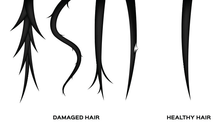 comparison of damaged hair and normal hair