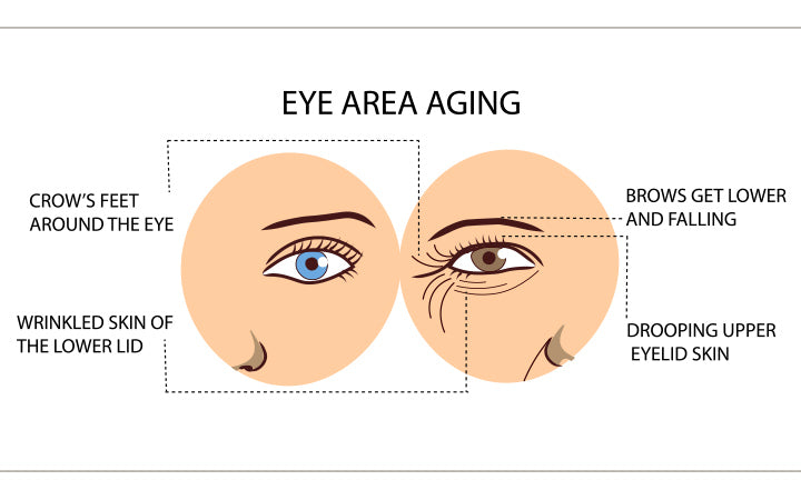eyes of young and old women with wrinkles and folds