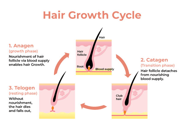 hair-growth