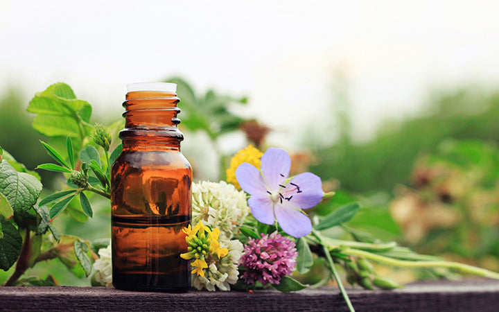 herbal aroma oil bottle with various drugplant flowers
